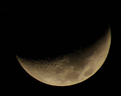 Our Waxing Moon