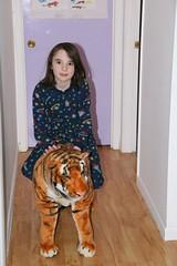 2009-01-09-e-tiger1