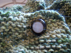 February sweater button