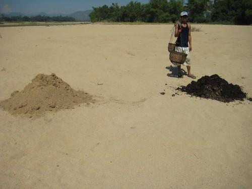 Gánh đất, gánh phân ra bãi cát