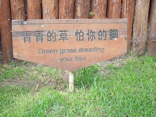 chinglish 8