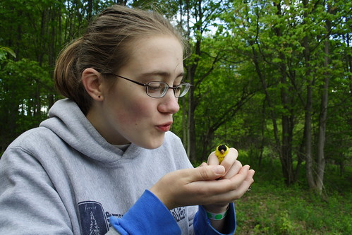 Emily and Goldfinch