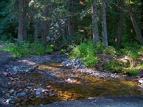 Chipmunk Creek