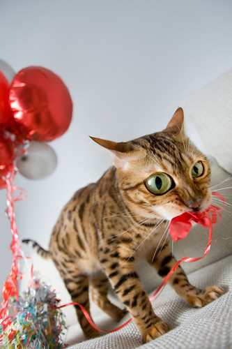 Helium addict