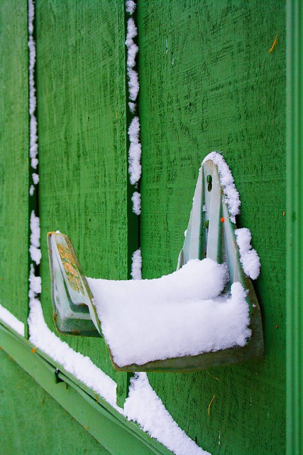 Snow on green