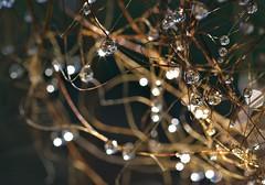 Gocce di Natale