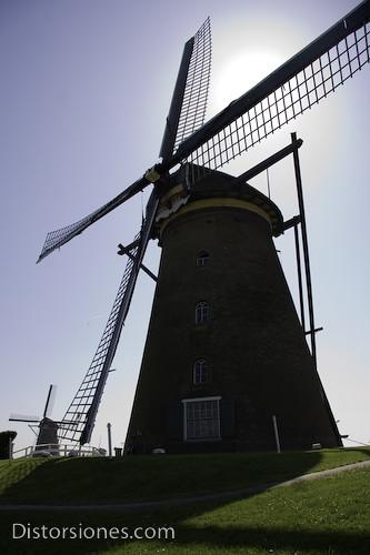Orgullo de Holanda