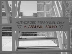 Alarm Will Sound
