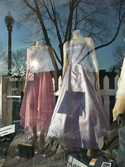 Gowns with reflected tree