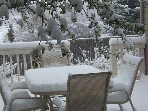 snow a