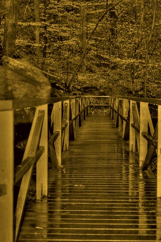 Footbridge in the Rain