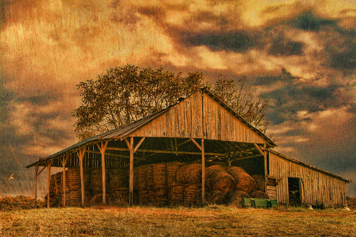 The Hay Barn