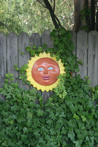 Backyard Sun 4