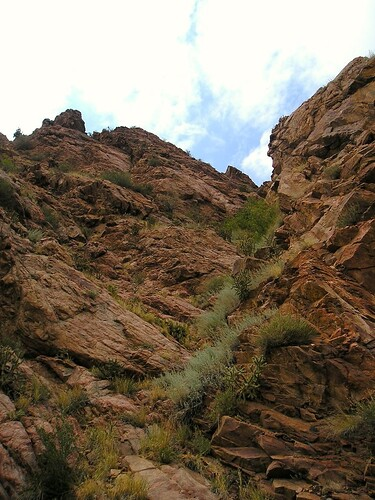 This is a view up the side of the trail.  Dont let the picture fool you its really really far to the top!