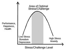 Optimizing Stress