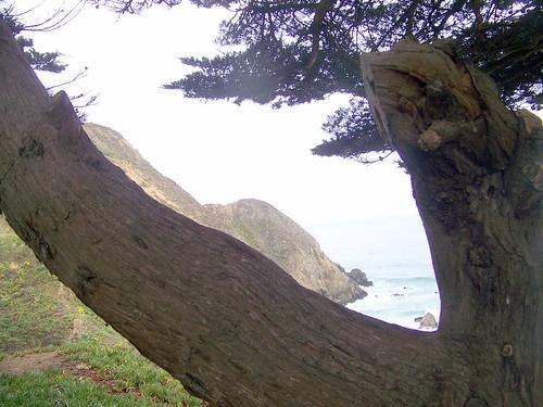 Pacifica coast (5)