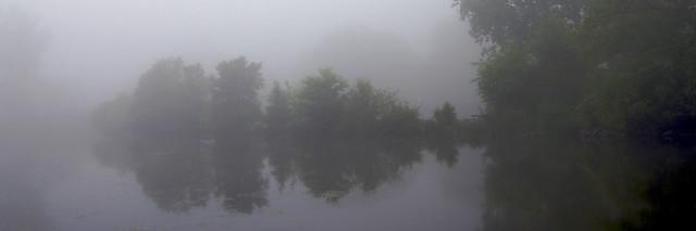 Reflected Fog