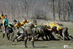 Alumni Rugby Game