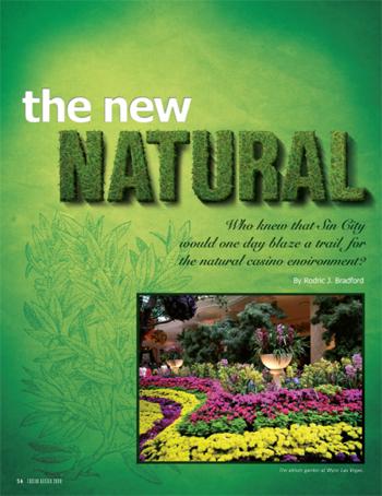 The New Natural Desgin