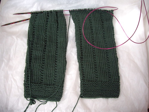 Two sleeves on a long circular needle using the Magic Loop method.