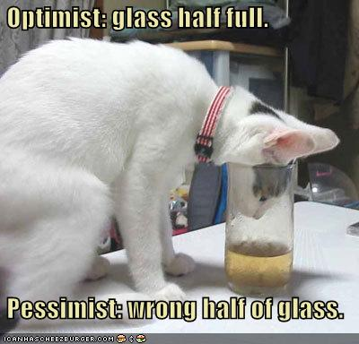 funny-pictures-cat-has-a-half-full-glass