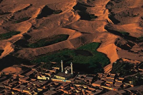mosquée et végétation des dunes, El-oued