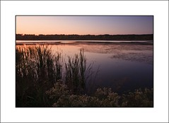 Banner Marsh Sunset 1