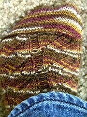 Nutkin Sock