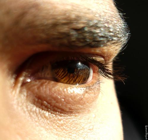 salud de la vista - omega 3