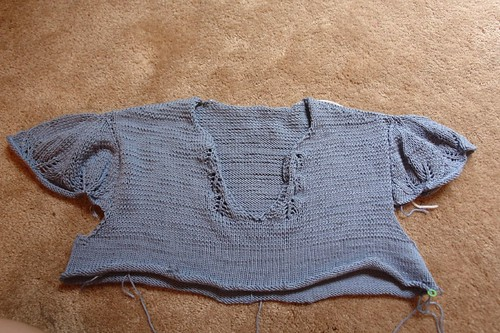 Fluttery Top with sleeves