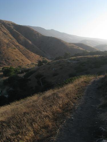 Santa Cruz 10