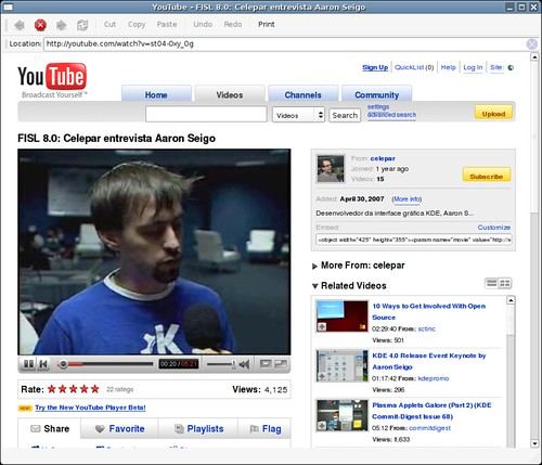 YouTube video in QtWebKit