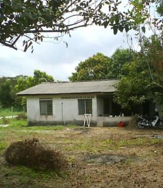 Rumah di kebun