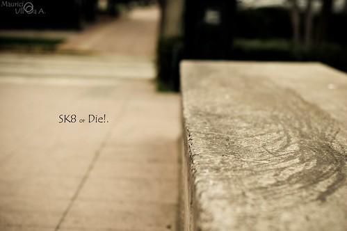 SK8 or Die!.