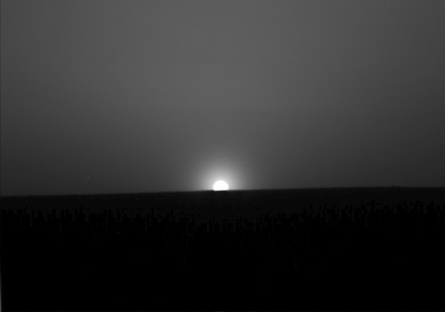 Mars Sunrise by Phoenix