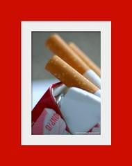 Rokok Itu Bahaya