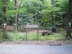 Waldbesetzung Kelsterbach Juni 2008 (01)