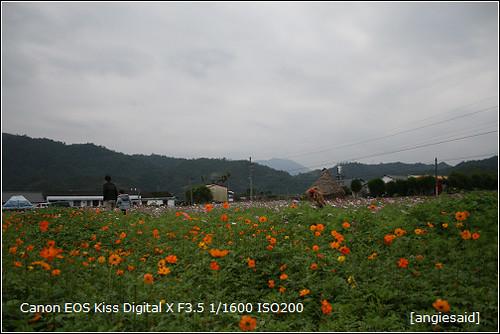 b-20090101_130702.jpg