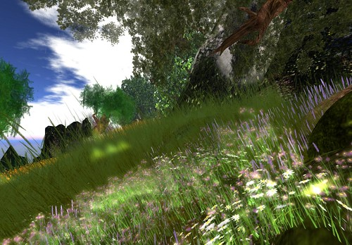 Obliette Hillside over the cove