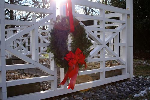 December 7 2008