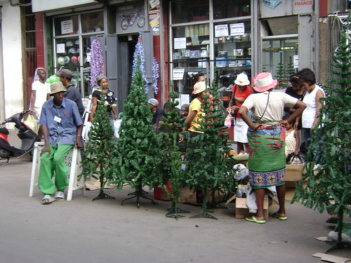 Vendors selling Christmas trees in Tana.