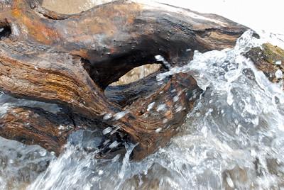 Driftwood & water