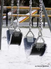 Ice Storm 2008-7