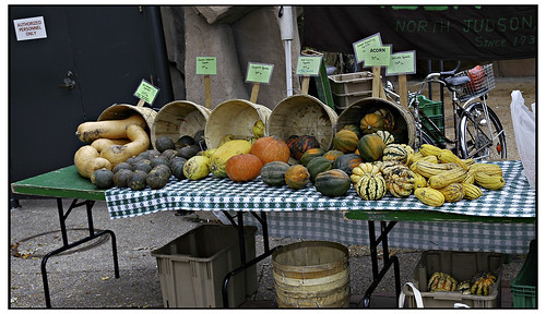 Squash - Green City Farmers Market