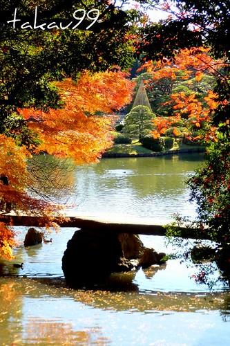 Autumn at Rikugien Garden Park, Tokyo Japan
