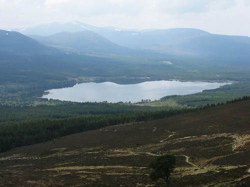 Glenmore Forest and Loch Morlich