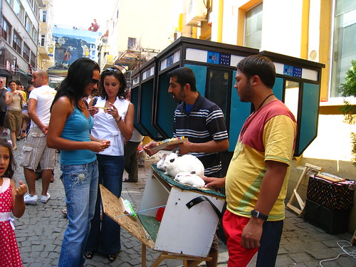 The fortune-telling bunnies of Istanbul