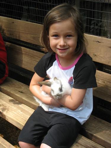 Bunny rabbit at Silver Dollar City