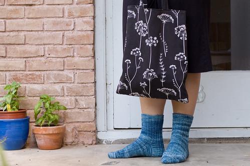 socks and basil