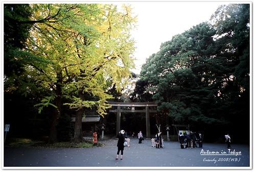 2008_1130_NB_14_14